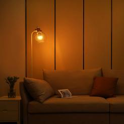 Xiaomi Mi Smart LED Bulb (Warm White)