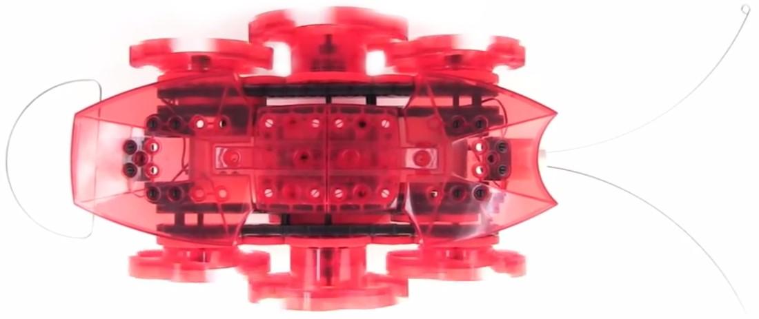 Przedstawiamy robota zabawkę HEXBUG VEX - Mrówka