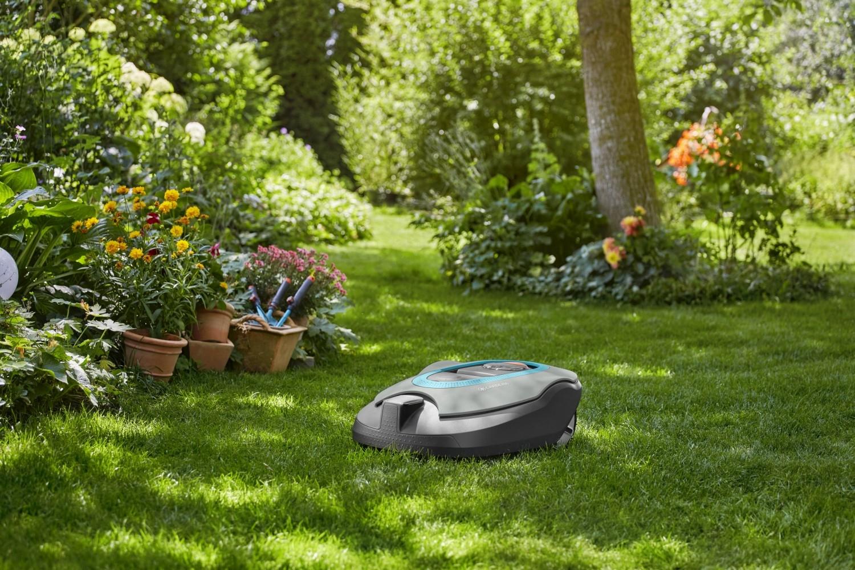 Doskonała pielęgnacja trawnika