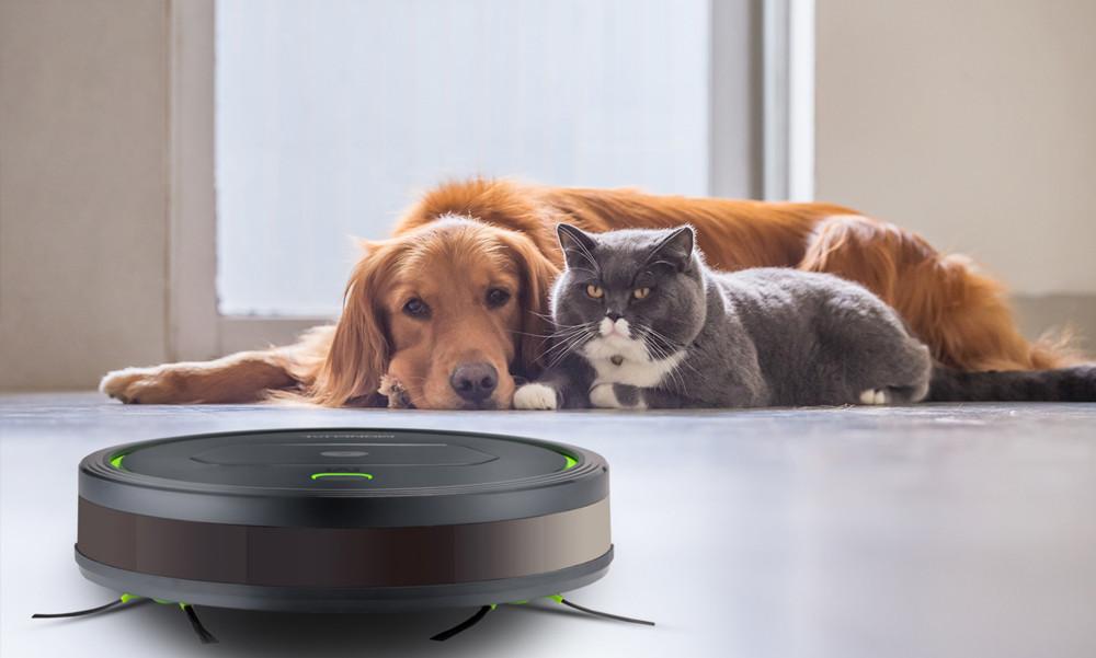 Dokładnie oczyści mieszkanie z sierści psa i kota